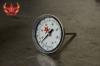 BRWPGNDA Einschraubthermometer